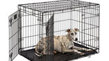 MidWest LifeStages Heavy-Duty Folding Metal Dog Crates