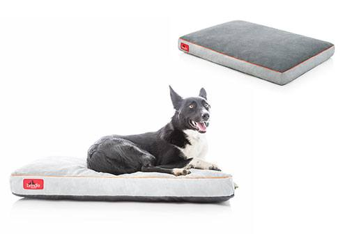 7 Best Washable Dog Beds Of 2018 Don T Buy Until You Read This Guide