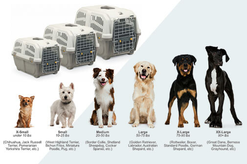 10 Best Dog Crates For Sale In 2019 The Full Guide